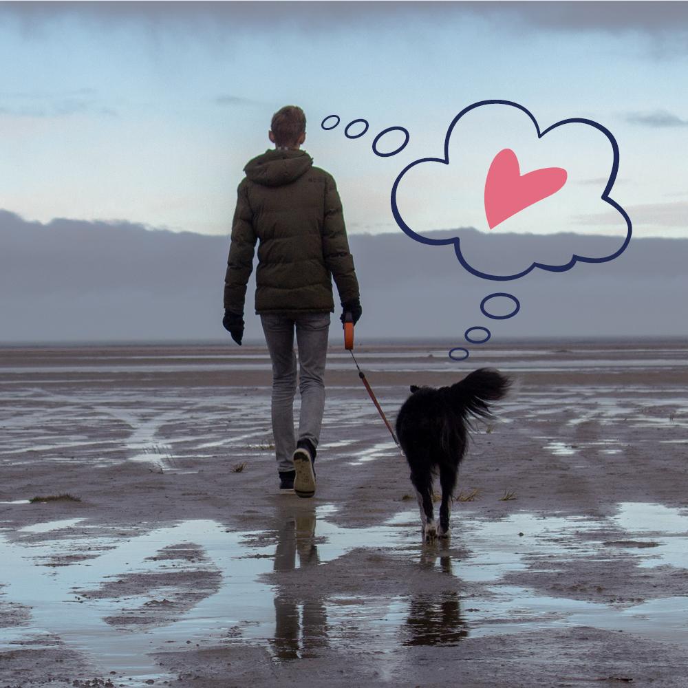 I cani capiscono il nostro stato d'animo